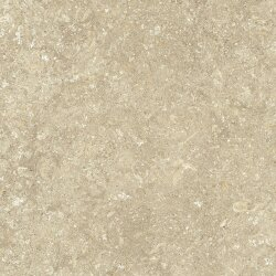 Плитка (120x120) fMXC Nord120Natural Matt - Nord